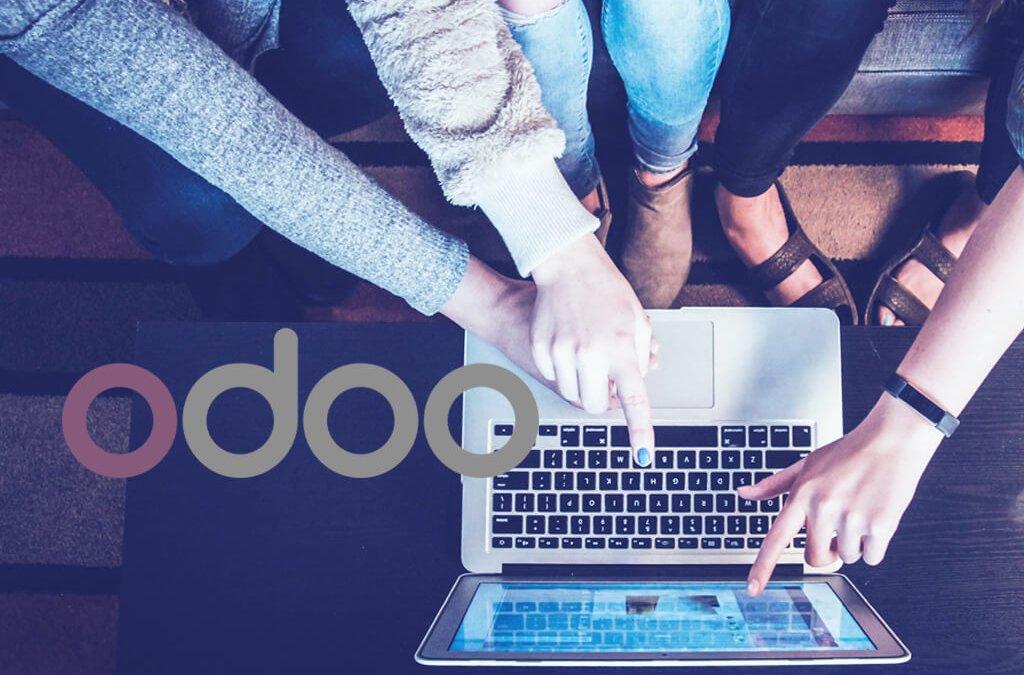 birkle IT AG as Odoo partner
