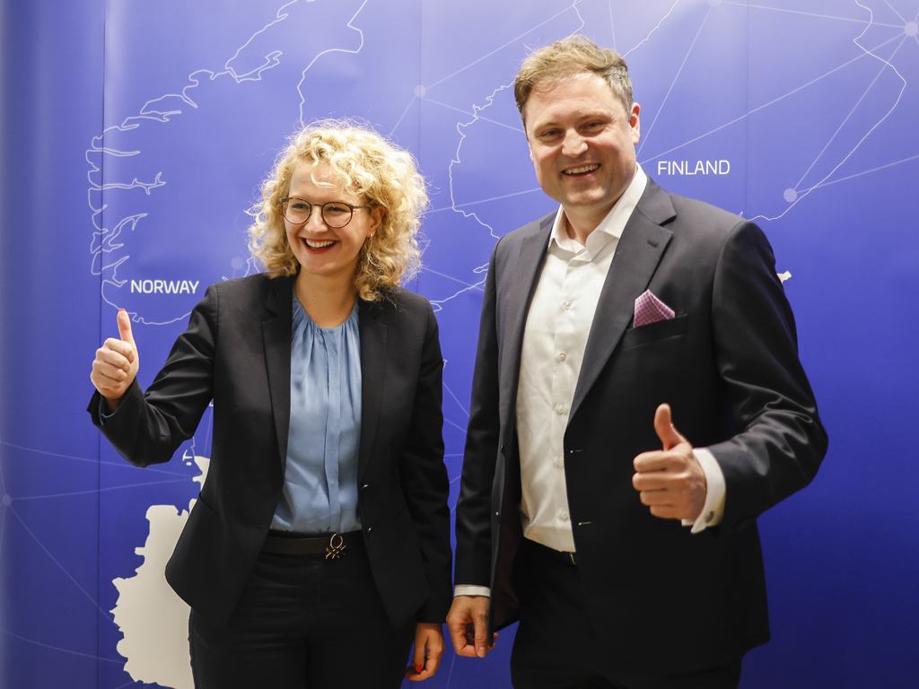 birkle IT AG in und mit dem Baltikum